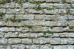 Muur van grijze steen Royalty-vrije Stock Afbeeldingen