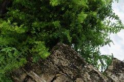 Muur van grote gebroken stoffig en roestige stenen royalty-vrije stock fotografie