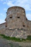 Muur van middeleeuws kasteel Stock Fotografie
