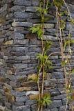 Muur van natuurlijke rotsen wordt gemaakt die Stock Foto