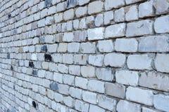 Muur van oude witte baksteen in PERSPECTIEF Stock Foto