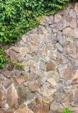 Muur van steen met klimophoek Royalty-vrije Stock Fotografie