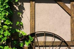 Muur van typisch rustiek huis met druivengebladerte en ijzerwiel Stock Afbeeldingen