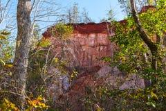 Muur van Voorzienigheidscanion achter bomen, de V.S. wordt gezien die Royalty-vrije Stock Afbeelding