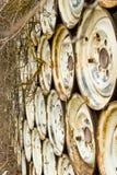Muur van Wielen met installaties die uit komen royalty-vrije stock afbeelding