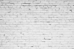 Muur van witte baksteen Stock Fotografie