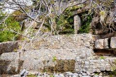 Muur Wadi Bani Habib Royalty-vrije Stock Foto