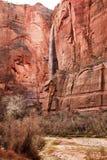 Muur Zion van de Rots van de Waterval van Sinawava van de tempel de Rode royalty-vrije stock fotografie