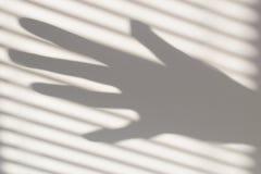 Muur, zonlicht, schaduw, hand, zonsondergang Stock Foto