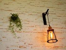 Muurbaksteen en bloem stock fotografie