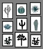 Muurbeelden met zwart-witte silhouetten van cactus, agave, en stekelige peer worden gezeten die Vector illustratie Stock Afbeelding