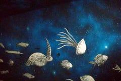 Muurschildering die waterdieren vertegenwoordigen Stock Afbeeldingen