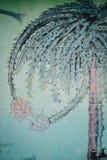 Muurschildering van draak-fruit, een gemeenschappelijk fruit bij lokale opslag stock fotografie