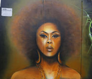 Muurschilderingkunst bij de buurt van Vooruitzichthoogten in Brooklyn Royalty-vrije Stock Afbeelding