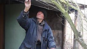 Muy un viejo hombre examina ?rboles del jard?n en la primavera antes de florecer quita las ramas adicionales que se preparan para metrajes