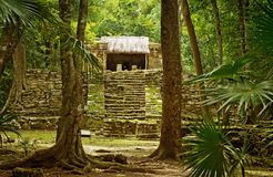 Muyil ancient Maya sites, Yucatan Peninsula in Mexico. Muyil also known as Chunyaxche was one of the earliest and longest inhabited ancient Maya sites on the royalty free stock image