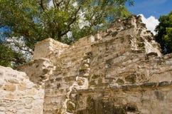Muyil ancient Maya sites, Yucatan Peninsula in Mexico royalty free stock photography