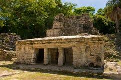 Muyil ancient Maya sites, Yucatan Peninsula in Mexico royalty free stock photo