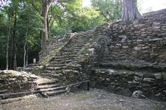Muyil ancient Maya site, Mexico. Muyil was one of the earliest and longest inhabited ancient Maya sites on the eastern coast of the Yucatan Peninsula. It is stock image