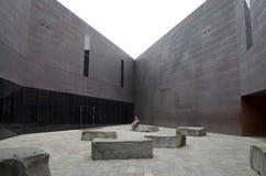 muzealni De potomstwa Francisco San Fotografia Stock