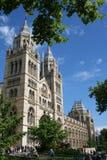 muzeum historii naturalnej London Fotografia Stock
