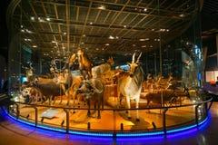 Muzeum Narodowe natura i nauka w Tokio, Japonia Zdjęcie Royalty Free