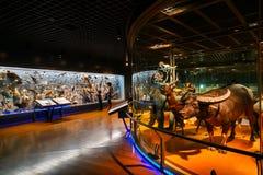 Muzeum Narodowe natura i nauka w Tokio, Japonia Fotografia Stock