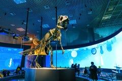 Muzeum Narodowe natura i nauka w Tokio, Japonia Zdjęcie Stock