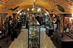 Muzeum wojna w Porto De Galinhas fotografia royalty free