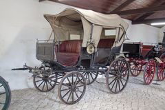 Muzeum Zwierzęcy trakcja samochody Fotografia Royalty Free
