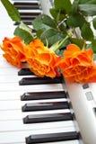 Muziek en bloem Royalty-vrije Stock Foto's