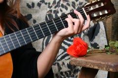 Muziek en Rozen Royalty-vrije Stock Afbeelding