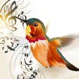 Muziek vectorachtergrond met zoemende vogel en nota's Stock Afbeeldingen