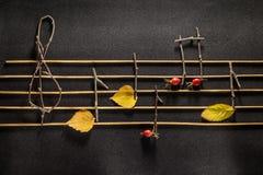 Muzieknotenconceptie Houten muzieknoten en bladeren stock fotografie