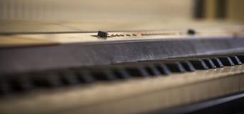 muzikaal instrument, de close-up van pianosleutels Stock Fotografie