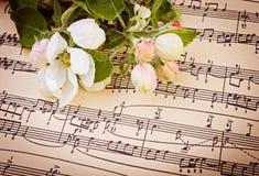 Muzikale achtergrond met appelbloemen stock fotografie
