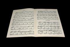 Muzikale pagina met nota's Stock Afbeelding
