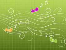 Muzikale vogels Royalty-vrije Stock Foto