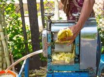 Muzułmańska kobieta Używa Rolkowego młyn Wydobywać trzcina cukrowa sok Zdjęcie Royalty Free