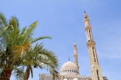 Muzułmański Islamski modlitewny meczet, liturgiczna architektoniczna struktura z wysokim góruje przeciw zieleni i niebieskiemu ni zdjęcie royalty free