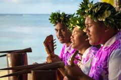 Muzycy śpiewają gitary i bawić się przy plażą Zdjęcie Royalty Free