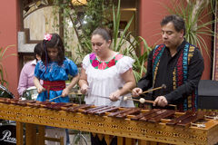 Muzycy bawić się marimba zdjęcia stock