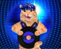 Muzyczny hełmofonu winylowego rejestru kot zdjęcia royalty free