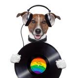 Muzyczny hełmofonu winylowego rejestru pies Zdjęcia Stock