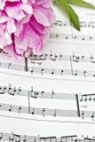 muzyczny prześcieradło Obraz Royalty Free