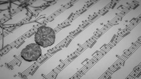 Muzyczny prześcieradło monochrom obrazy royalty free