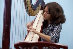 Muzyk bawić się harfę Fotografia Stock