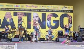 Muzyk muzyka ludowa na scenie Obraz Royalty Free