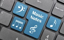 Muzyk notatki Obrazy Royalty Free