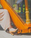 Muzyk prasy na pedałowej harfie zdjęcie stock